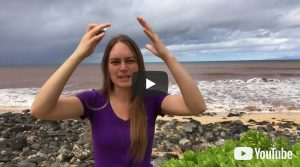 Video 031: Trauma Life – release negative emotions with essential oils